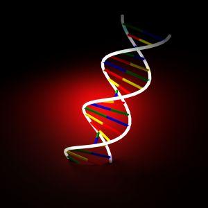 Criminal DNA evidence